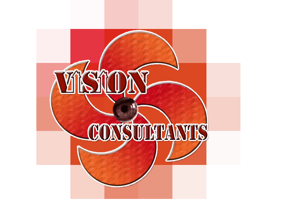 Mission statement for the Vision Consultants